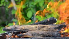 Brandend brandhout De vlambrandwonden in de grill Brandclose-up stock footage