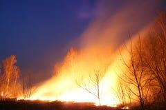 Brandend gebied bij nacht stock fotografie