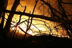 Brandend gebied bij nacht royalty-vrije stock afbeelding