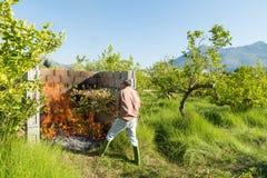 Brandend het snoeien afval Royalty-vrije Stock Foto