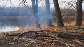 Brandend kampvuur op kust van een de herfst bosmeer stock videobeelden