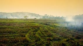 Brandende aanplantingen in Afrika Stock Afbeeldingen