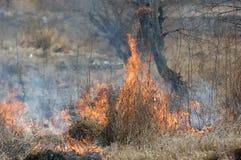 Brandende Aarde. royalty-vrije stock afbeeldingen
