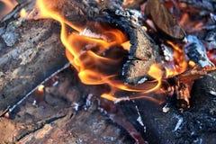 Brandende boomtak met een close-up van de brandvlam stock foto's