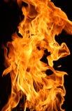 Brandende brand Royalty-vrije Stock Afbeelding