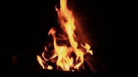 Brandende Brand bij Nacht 02 stock footage