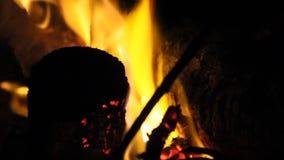 Brandende brand met brandhout stock videobeelden