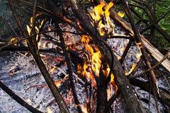 Brandende brand op de aard stock afbeeldingen