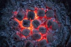 Brandende briketten in het avond licht Stock Afbeeldingen