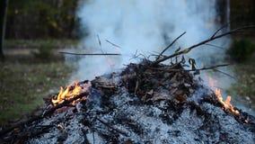 Brandende de herfstbladeren in de brand met dikke rook stock videobeelden