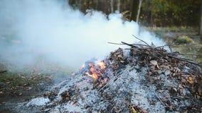 Brandende de herfstbladeren in de brand met dikke rook stock footage