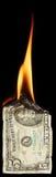 Brandende dollar stock fotografie