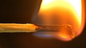 Brandende Gelijke en Vlam Het close-up van de veiligheidsgelijke op een zwarte achtergrond stock video
