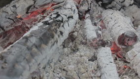 Brandende Houtskool stock video