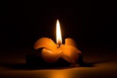 Brandende kaars in de vorm van een bloem in dark Stock Fotografie