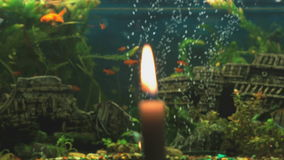 Brandende kaars op de achtergrond van het aquarium stock footage