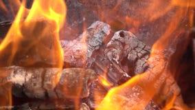 Brandende langzame de motieachtergrond van de brandplons stock video