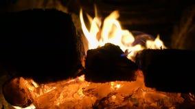 Brandende logboeken bij het fornuis stock footage