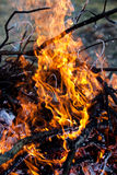 Brandende open haard Stock Foto's