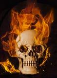 Brandende schedel Royalty-vrije Stock Afbeeldingen