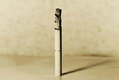 Brandende sigaret royalty-vrije stock afbeelding