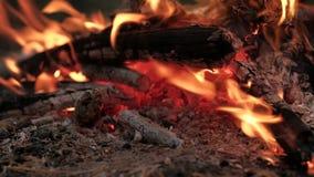 Brandende steenkolen in de brand stock footage