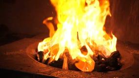 Brandende steenkool in de kom stock videobeelden