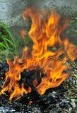 Brandende steenkoolvlammen royalty-vrije stock afbeeldingen