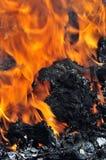 Brandende steenkoolvlammen stock foto's