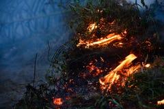 Brandende Struik Royalty-vrije Stock Afbeeldingen