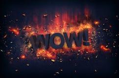 Brandende vlammen en explosieve vonken - WAUW! stock afbeelding