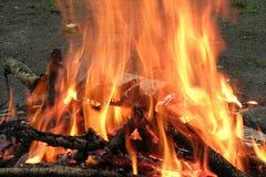 Brandende vuur en logboeken bij nacht Stock Afbeeldingen