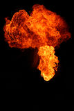 brandflamma royaltyfri foto