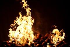 Brandflamma Arkivfoton