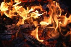 Brandflamma och kol arkivbild