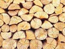 brandhout Stock Foto