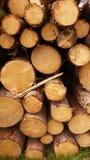 Brandhout - achtergrond Stock Afbeeldingen