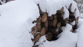 Brandhout dat met sneeuw wordt behandeld stock afbeeldingen
