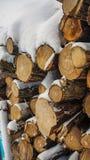 Brandhout in de sneeuw, die in de sneeuw is gevallen stock foto