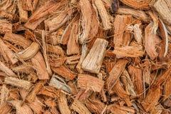 Brandhout, gemaakt ââfrom tot kokosnotenschil Royalty-vrije Stock Afbeelding