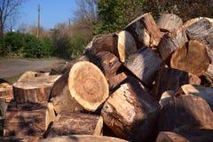 Brandhout op aard Royalty-vrije Stock Fotografie