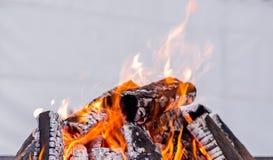 Brandhout - rode en oranje brand voor het verwarmen van handen stock foto