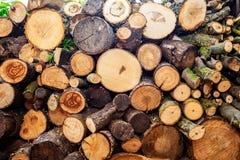 brandhout Stapel van houten logboeken Gehakt brandhout op een stapel Natuurlijke houten achtergrond Stock Afbeeldingen