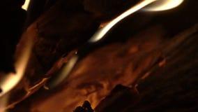 Brandhout, vlammen, steenkolen stock video