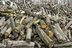 Brandhout voor Verkoop Royalty-vrije Stock Afbeeldingen