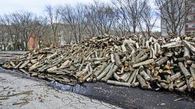 Brandhout voor Verkoop Royalty-vrije Stock Foto's