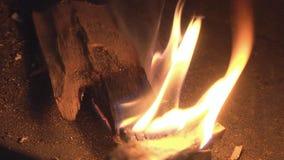 Brandhout voor Verlichting stock video