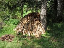 Brandhoutstapel in het bos bij de zomer wordt gestapeld die Zuid-Tirol, Itali? stock foto