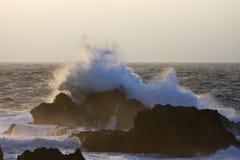 Branding rotskust, Azoren; Surf at rocky coast, Azores