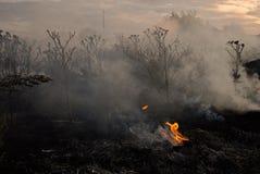 brandkatastrof Fotografering för Bildbyråer